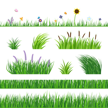 Illustration pour Green seamless grass elemnts. Lawn grass, reed and sunflower. Flying butterflies and flowers. Horizontal seamless elements. - image libre de droit