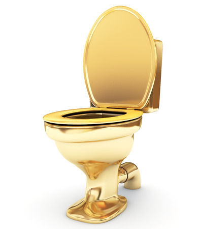 Golden toilet bowl as a status