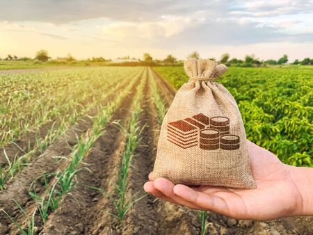 Foto de The farmer holds a money bag on the background of plantations. Lending and subsidizing farmers. Grants and support. Profit from agribusiness. Land value and rent. Taxes taxation. Agricultural startups - Imagen libre de derechos