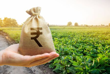 Photo for Money bag on the background of agricultural crops in the hand of the farmer. Agricultural startups. Profit from agribusiness. Lending and subsidizing farmers. Rupee, rupiah. Grants and support. - Royalty Free Image