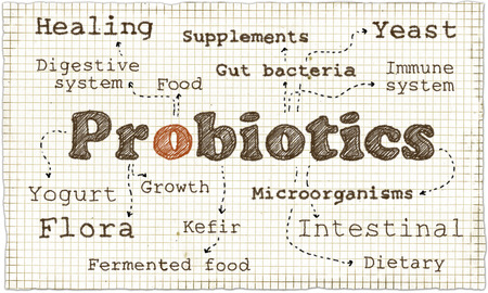 Photo for Illustration about Probiotics with soft Pen on old Paper - Royalty Free Image