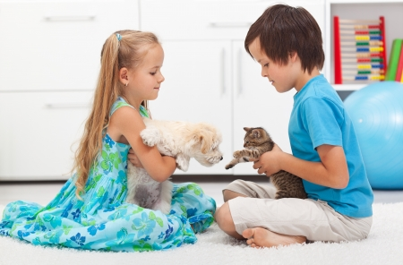 Kids playing with their pets - dog and cat