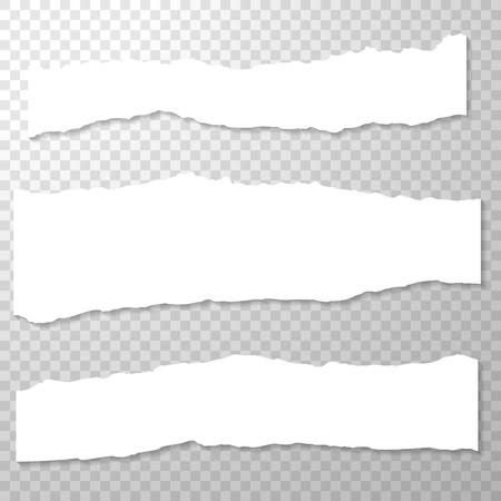 Illustration for Horizontal torn off piece of paper with spiral bound. Empty, isolated paper edge on transparent background. White horizontal paper banner. Template for advertising. Vector illustration. - Royalty Free Image