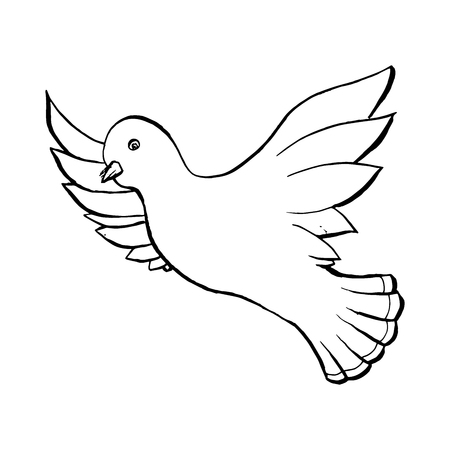 Illustration pour Dove Flying Bird in Sketch Style. Outline or Contour Drawing. Hand drawn Vector Isolated Illustration. - image libre de droit