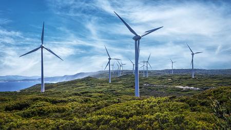 Photo pour Wind turbines at the Albany Wind Farm, Western Australia - image libre de droit