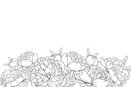 Illustration for Peony spring summer flowers shrub bloom blossom black and white detailed outline sketch drawing. Bottom border frame horizontal landscape layout. Vector design illustration. Vintage style. - Royalty Free Image