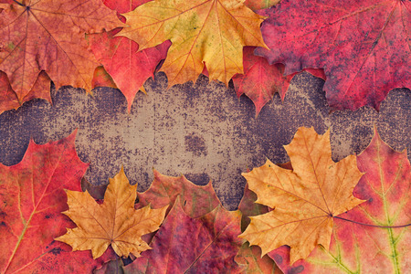 Photo for Bright autumn leaves arranged in a frame on a shabby chic background - Royalty Free Image