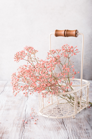 Foto für Bunch of pink Gypsophila, Baby's-breath flowers, on old white wooden background with copy space. Soft light, selective focus. - Lizenzfreies Bild