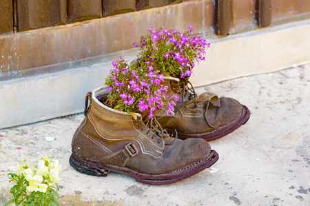 Foto de A pair of old used boots up cycled as flower pots with lovely purple flowers in them. Boots are worn and weathered with a lovely patina to them. Recycle at its best. - Imagen libre de derechos