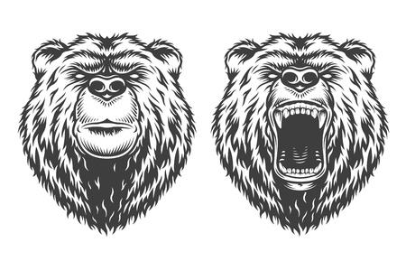 Illustration pour Vintage collection style bear - image libre de droit