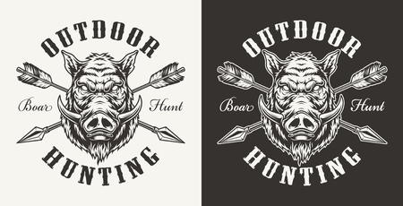 Illustrazione per Vintage boar hunting label with ferocious hog head and crossed arrows on light and dark backgrounds isolated vector illustration - Immagini Royalty Free