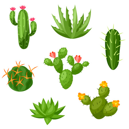 Illustration for Collection of abstract cactuses and plants. Natural illustration. - Royalty Free Image