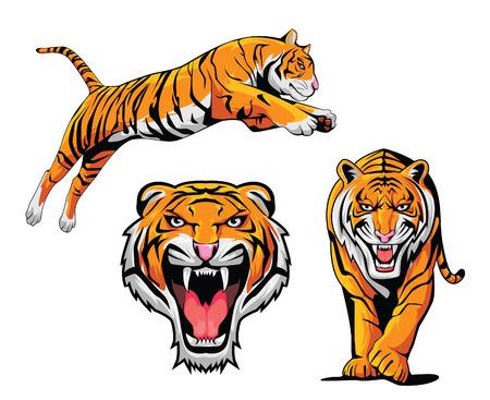 Illustration pour Tiger Illustration Set - image libre de droit