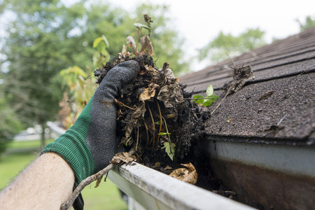 Photo pour Cleaning gutters during the summer time. - image libre de droit