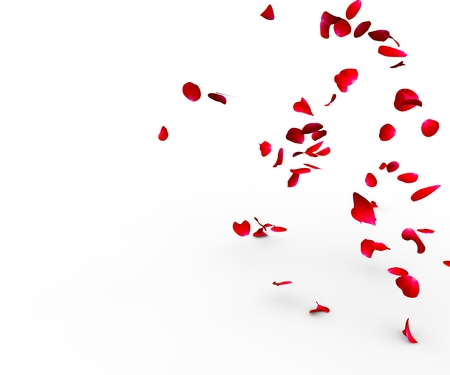 Foto de Rose petals falling on a surface on a white background isolated - Imagen libre de derechos
