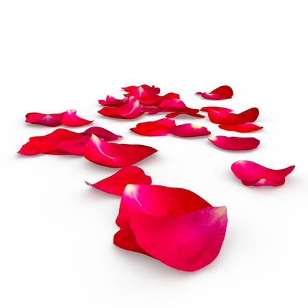 Photo pour Petals of a red rose lying on the floor. Isolated background. 3D Render - image libre de droit