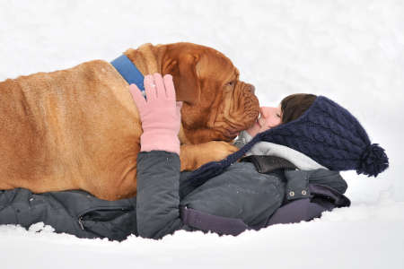 Huge Playful Dog and her Master happily lying in Snow