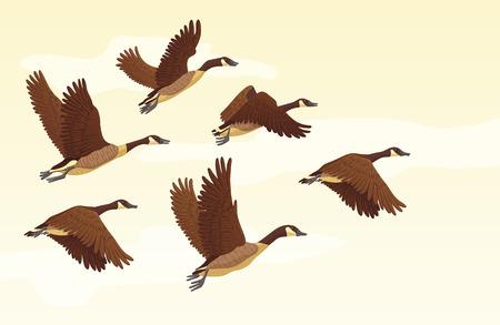 Ilustración de Flock of migrating geese flying. Migratory birds concept. Vector illustration. - Imagen libre de derechos