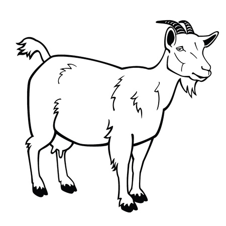 Goat Face Side Drawing Goat Face Side Drawing