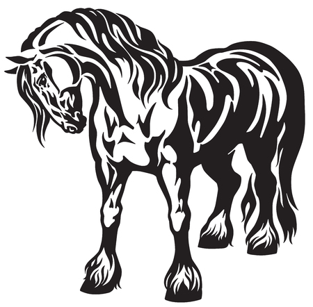 Illustration pour heavy draft horse Black and white tribal tattoo style vector illustration - image libre de droit