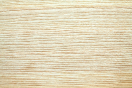 Photo for ash wood texture - Royalty Free Image
