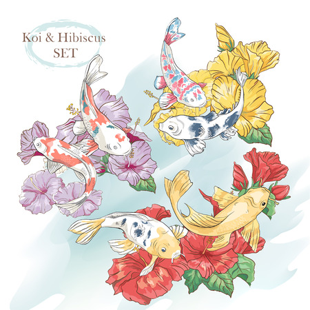 Illustration for Beautiful set of exotic hibiscus and koi fish - Royalty Free Image