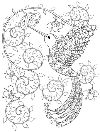 Illustration for Coloring page with Hummingbird, zentangle flying bird  for adult Coloring books or tattoos with high details isolated on white background. Vector monochrome sketch of exotic bird. - Royalty Free Image