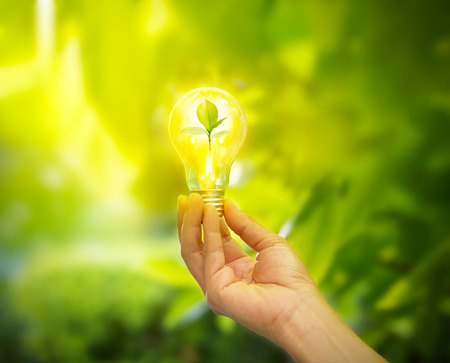 Photo pour hand holding a light bulb with energy and fresh green leaves inside on nature background, soft focus - image libre de droit