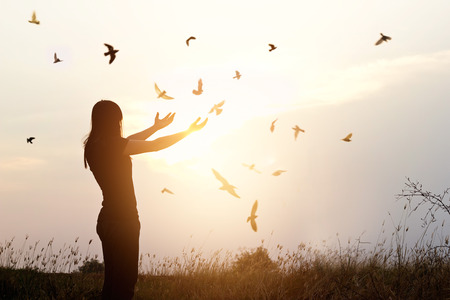 Foto de Freedom of life, free bird and woman enjoying nature on sunset background, freedom concept - Imagen libre de derechos