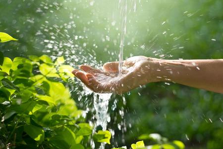 Photo pour Water pouring in woman hand on nature background, environment concept - image libre de droit
