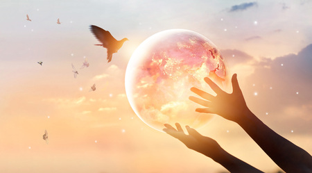 Foto de Woman touching planet earth of energy consumption of humanity at night, and free bird enjoying nature on sunset background, hope concept, Elements of this image furnished by NASA - Imagen libre de derechos