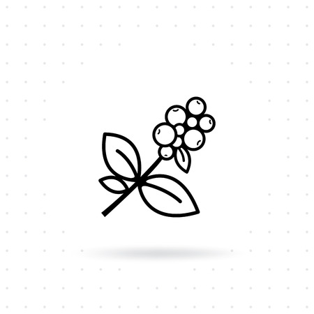 Illustration for Coffee plant icon. Coffee tree branch with berries. Coffee bean with leaf on white isolated background. Branch of coffee icon in line style design. Vector illustration - Royalty Free Image