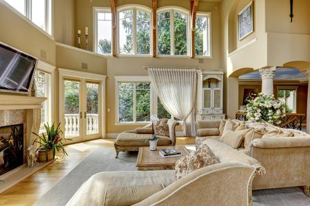 Foto de Impressive high ceiling living room with tv, fireplace and antique furniture - Imagen libre de derechos
