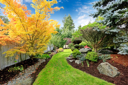 Foto de Beautiful backyard landscape design  View of colorful trees and decorative trimmed bushes and rocks - Imagen libre de derechos
