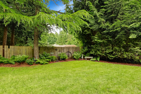 Foto de Green backyard area with wooden fence and decoration - Imagen libre de derechos
