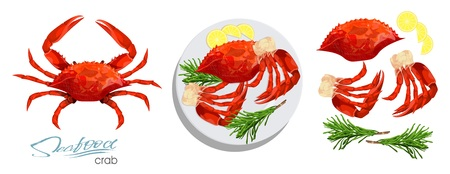 Illustration pour Meat crab with rosemary and lemon on the plate.Vector illustrationin cartoon style. Seafood product design. Crab, lemon, rosemary separately on a white background. Edible sea food. Vector illustration - image libre de droit
