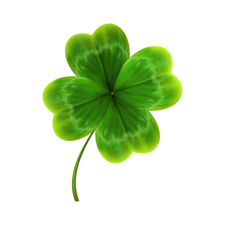 Illustration for green leave of clover. realistic 3d vector illustration - Royalty Free Image