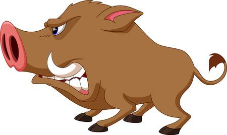 Illustration pour Wild boar cartoon angry - image libre de droit