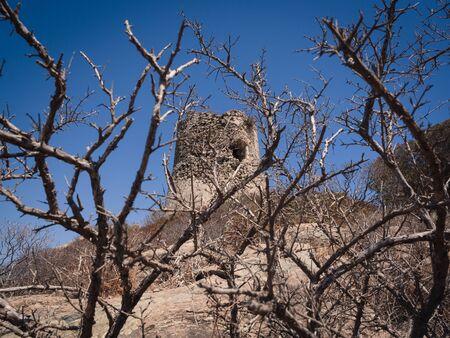 Photo pour Ancient stone tower surrounded by thorny brambles. - image libre de droit