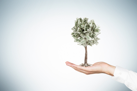 Photo for Close up of a businessman s hand holding a tiny dollar tree while standing against a gray wall. Mock up - Royalty Free Image