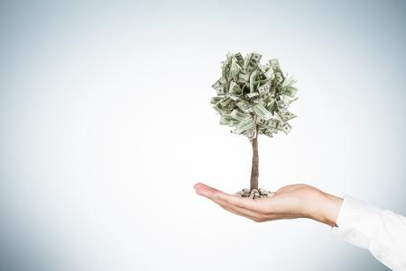 Foto de Close up of a businessman s hand holding a tiny dollar tree while standing against a gray wall. Mock up - Imagen libre de derechos