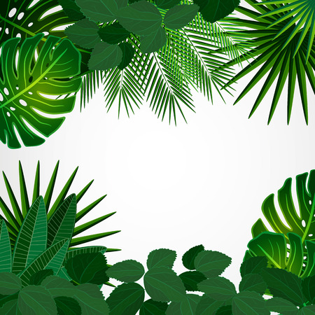 Illustration pour Tropical leaves. Floral design background. - image libre de droit