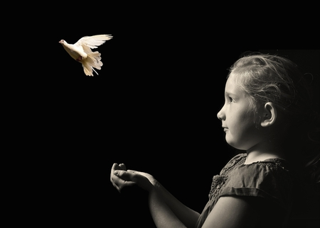 Photo pour The little girl releasing a white dove from hands . Symbol of peace on a black background. - image libre de droit