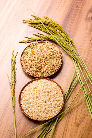 Foto de paddy and brown rice on the wooden plate and rice plant - Imagen libre de derechos