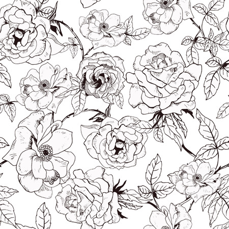 Illustration pour Abstract seamless pattern with hand drawing isolated white roses. Vector illustration. - image libre de droit