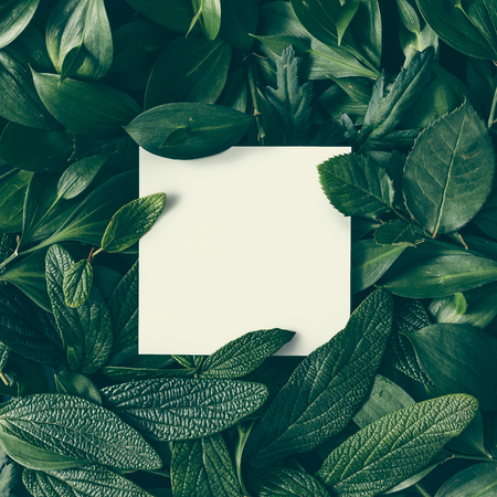 Photo for Creative layout made of flowers and leaves with paper card note. Flat lay. Nature concept - Royalty Free Image