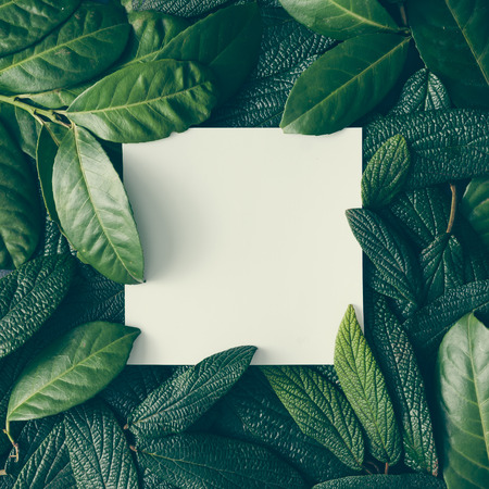 Photo for Creative layout made of green leaves with paper card note. Flat lay. Nature concept - Royalty Free Image