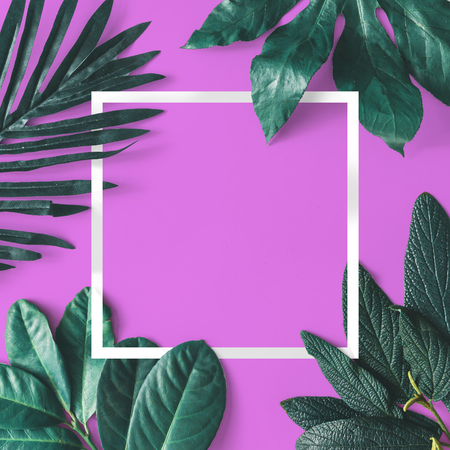 Foto de Creative minimal arrangement of leaves on pink background with white frame. Flat lay. Nature concept. - Imagen libre de derechos