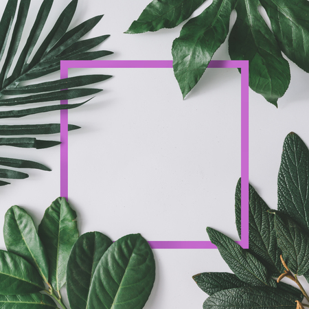 Photo for Creative minimal arrangement of leaves on bright white background with pink frame. Flat lay. Nature concept. - Royalty Free Image