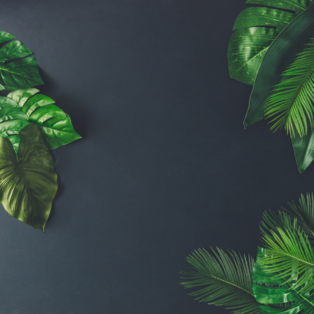 Photo pour Creative nature layout made of tropical leaves and flowers. Flat lay. Summer concept. - image libre de droit